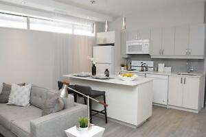 LARGE 2 BR ~ Walking distance from the Humber River Hospital!