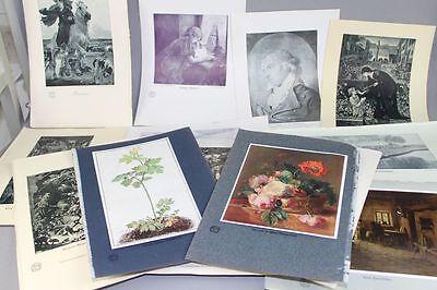 14 alte Bildtafeln um 1900 aus Hochland Zeit.- Dürer + Kästner + Huijsum + /S119