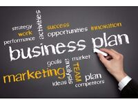 Need a Professional Business Plan Writer? Hire Business Expert Now