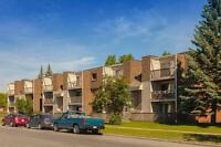 1 Bdrm available at 5300 Rundlehorn Drive NE, Calgary