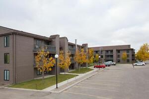 Large and Bright 2 Bedroom with 2 Bathrooms with 1 Month Free!