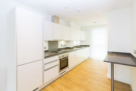 BRAND NEW 3 BED WITH TERRACE - BOW RIVER VILLAGE E3 - BROMLEY BY BOW MILE END STRATFORD POPLAR CITY