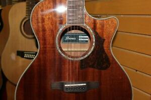 Guitare Ibanez AE245-NT