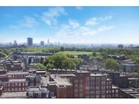 BARNES/PUTNEY/ROEHAMPTON 1 BEDROOM LUXURY APARTMENT- AVAILABLE END OF AUGUST. MUST BE SEEN!