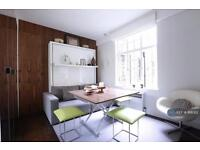 Studio flat in Hallam Street, London, W1W