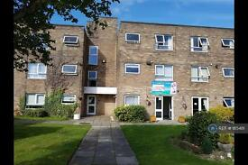 1 bedroom flat in Meadowfield, Ashington, NE63 (1 bed)