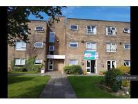 1 bedroom flat in Meadowfield, Ashington, NE63 (1 bed)