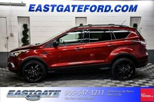 2017 Ford Escape SE with Sport Pkg