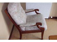 Fireside lounge easy Chair Armchair