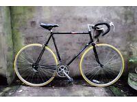 RALEIGH PURSUIT, 23.5 inch, vintage racer racing road bike, 12 speed