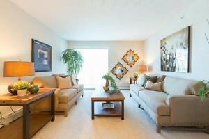 Pet friendly Two Bedroom Apartment w insuite laundry SE Edmonton Edmonton Edmonton Area image 2