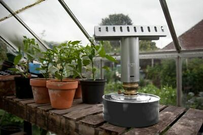 Greenhouse Paraffin Heater, Single, By Apollo