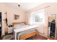 TODAY CRAZY OPPORTUNITY !! - DOUBLE , SINGLE AND TWIN ROOMS ** ZONES 1/2/3