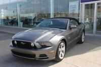 2014 Ford Mustang GT 5.0L GT
