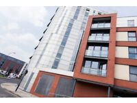 Daisy Spring Works - Sheffield - Spacious and modern two bedroom and two bathroom flat, with parking