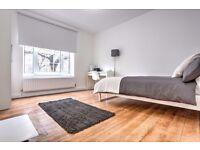 Beautiful bedroom in a spacious apartment near Kennington Park