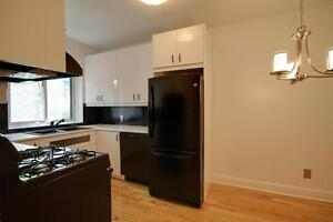 Renovated | Heat + hot water incl | Downtown | Pet friendly