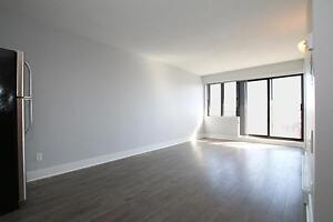420 Parkdale - Newly Renovated FURNISHED 2 Bdrm in Westboro