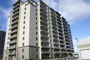 Fallowfield Towers II - The Hickory Apartment for Rent Kitchener / Waterloo Kitchener Area image 1
