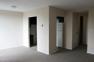 2 Bedroom Apartment for Rent in St. Catharines: Near Amenities!
