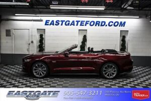 2017 Ford Mustang GT Executive Driven  -$1500.00 Cash -$1000 Cos