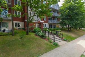 Beau 3 1/2 avec vue sur la cour avec les arbres dispo mi-mai Québec City Québec image 3