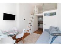 Studio flat in London, London, SW5