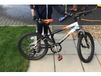 Kids 20 inch bike