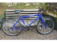 Bikes Boys mountain bike ( excellent condition )