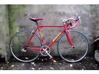 RICCI. 22 inch, 56 cm. Vintage Italian racer racing road bike, Campagnolo components, 14 speed