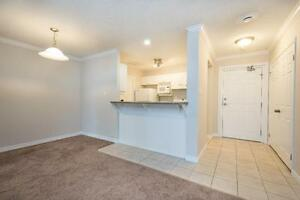 OPEN CONCEPT - 2 BEDROOM APARTMENTS - IN-SUITE LAUNDRY London Ontario image 7