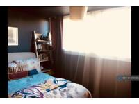 1 bedroom in Sylvan Road, London, SE19
