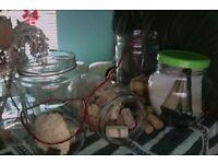 BIG GLASS JARS