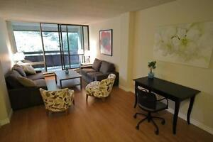 Large 1 Bedroom Apartment in Kitchener - ALL UTILITIES INCL.! Kitchener / Waterloo Kitchener Area image 4