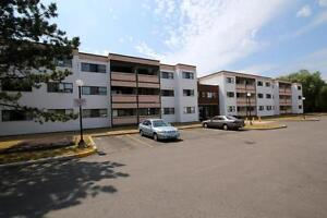 Large 1 Bedroom Apartment in Kitchener - ALL UTILITIES INCL.! Kitchener / Waterloo Kitchener Area image 3
