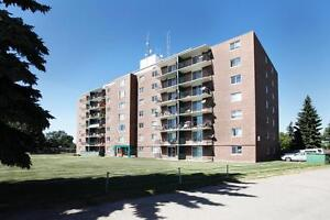 Spacious 1 Bedroom With Very Big Balcony Avail May 1.