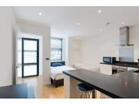 ** EXCEPTIONAL STUDIO SUITE ON THE GROUND FLOOR OF THIS LUXURY DEVELOPMENT. CANARY WHARF. CB **