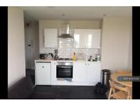 1 bedroom flat in South Terrace, Littlehampton, BN17 (1 bed)