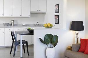 GRAND appartement à 1 chambre à louer à Hull : Gatineau, QC
