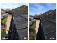 Gutter & Fascia Cleaning ⭐️