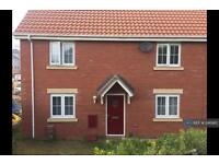 3 bedroom house in Grebe Court, Norwich, NR8 (3 bed)