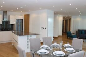 BRAND NEW LUXURY 3 BEDROOM APARTMENT WITH AMAZING DOCK VIEWS - CANARY WHARF ARENA TOWER FURNISHD