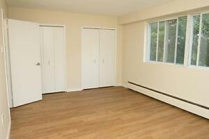 LARGE 2 Bedroom near the Victoria Hospital! Pet Friendly