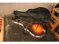 COLLINGS MF Sunburst Acoustic Mandolin