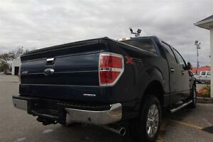 2013 Ford F-150 XLT Windsor Region Ontario image 5