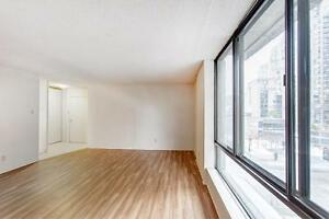 Large 2 BEDROOM (4.5) APARTMENT for rent - Downtown/ Plateau
