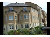 2 bedroom flat in Baines Way, Grange Park, NN4 (2 bed) (#1199618)