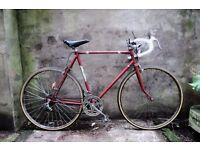 CHAMPION, 23 inch, vintage racer racing road bike, 10 speed
