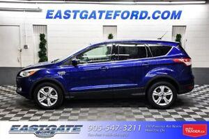 2014 Ford Escape SE rear camera
