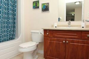 Luxury 1 Bedroom with 5 appliances including In-suite laundry! Cambridge Kitchener Area image 12